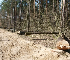 Przebudowa drogi powiatowej do Dąbcza_13